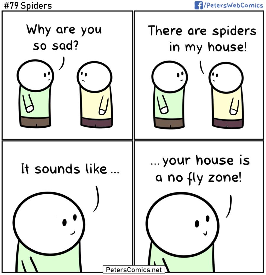 spiders funny punny joke comic